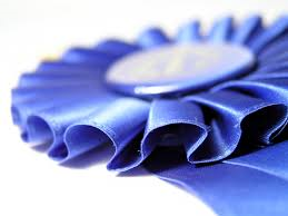 blue ribbon horse show •Arizona Horse Lovers Park